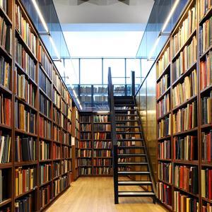 Библиотеки Думиничей