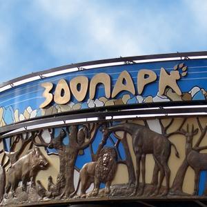 Зоопарки Думиничей